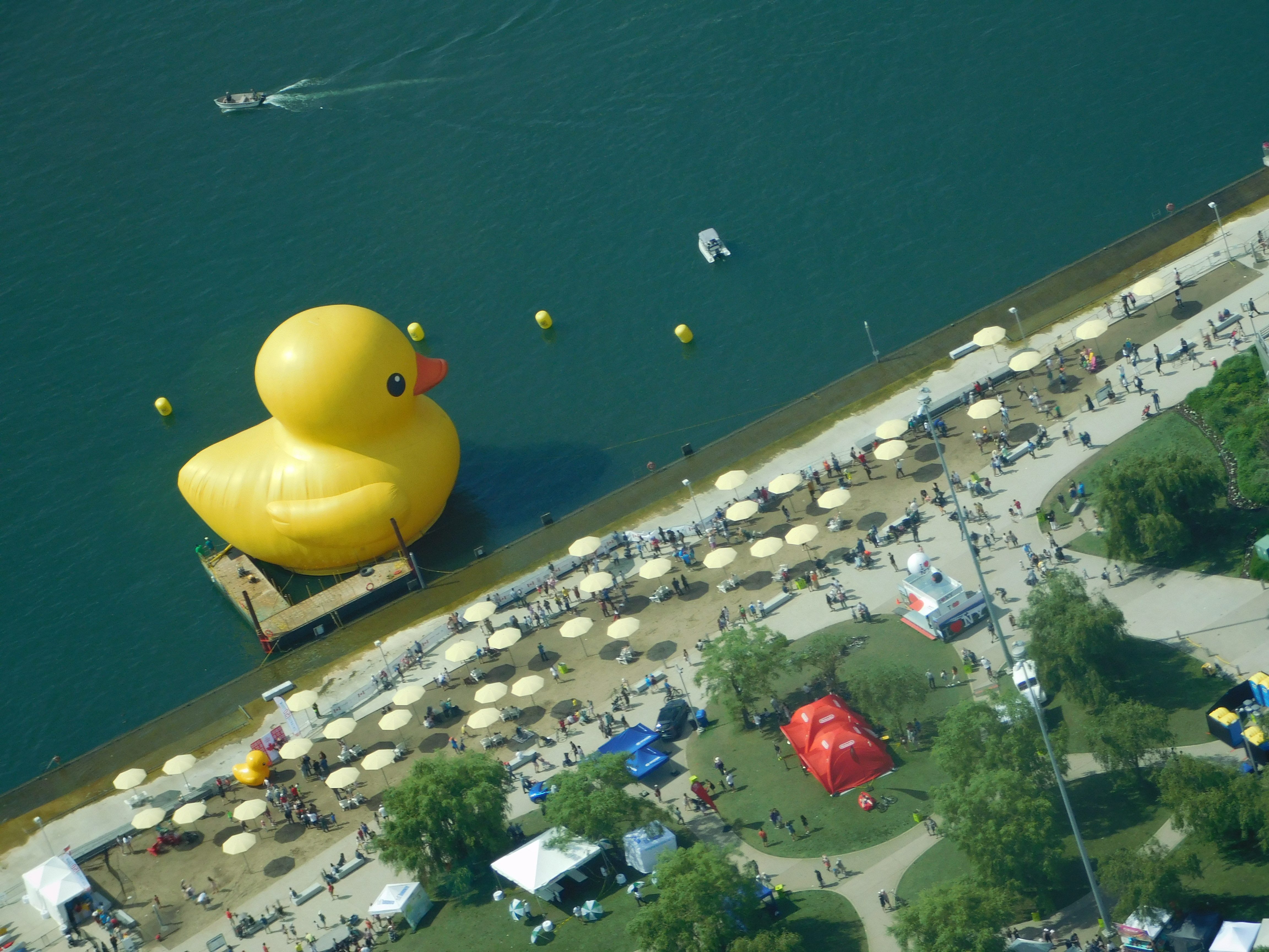 #14 The largest rubber duck in the world just happened to be in Toronto. This is him from the CN Tower.