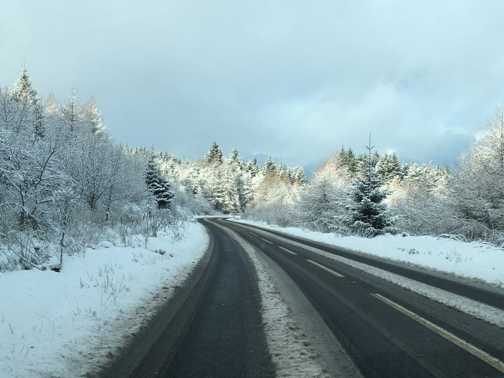 Beautiful snowy forest that we passed on our Northern Ireland roadtrip!
