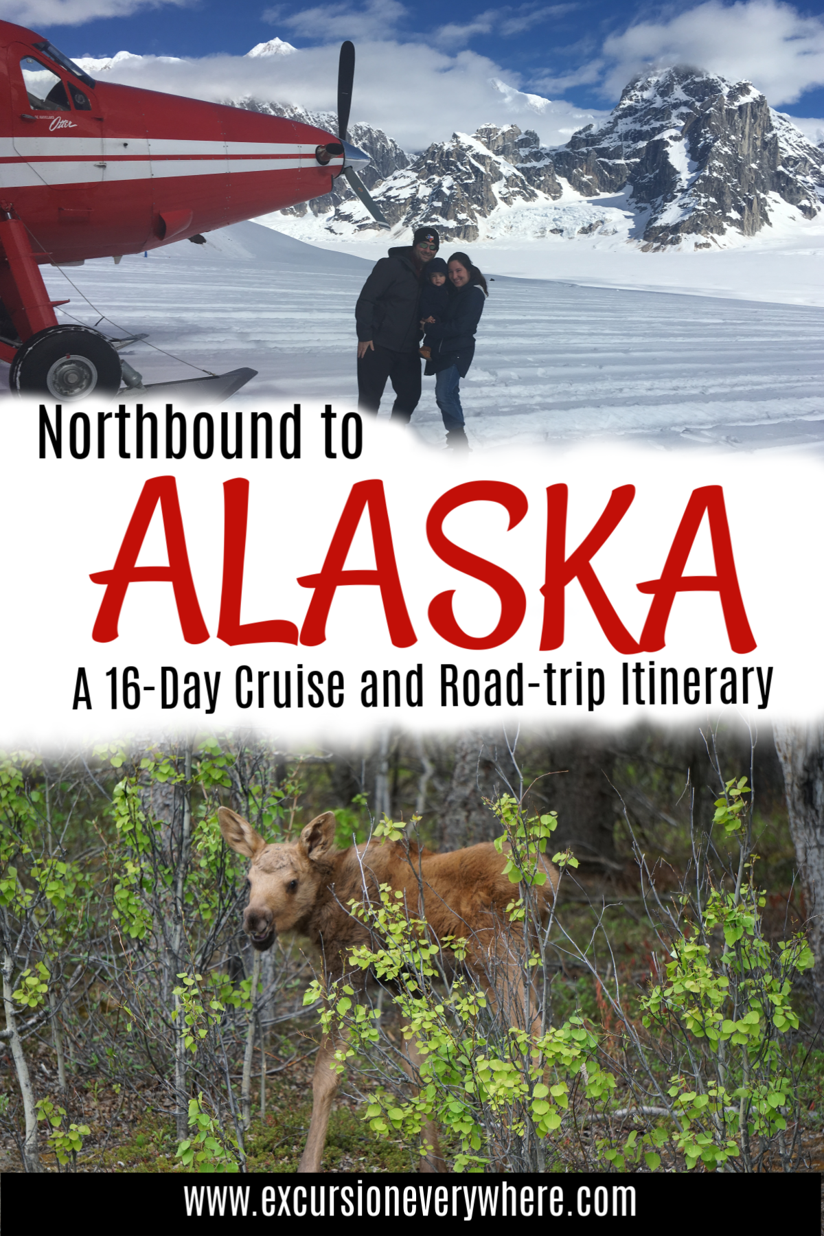 Travel blogger's 16-day itinerary to see Alaska by cruise ship and by road-trip! Includes a detailed itinerary, road-trip map, tons of photos, hotels, restaurant recommendations and more! www.excursioneverywhere.com
